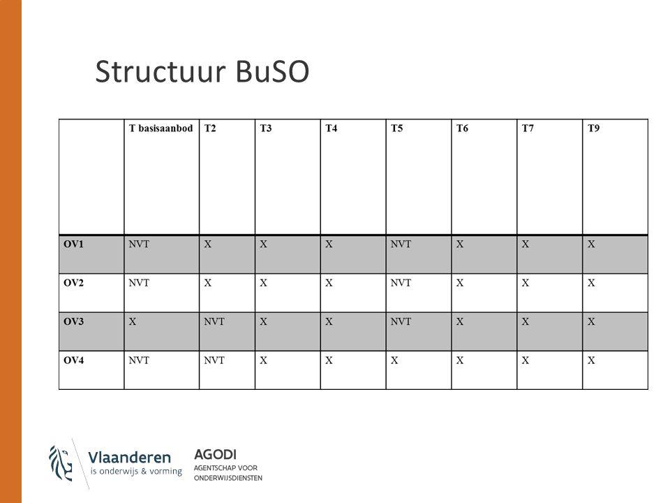 Structuur BuSO