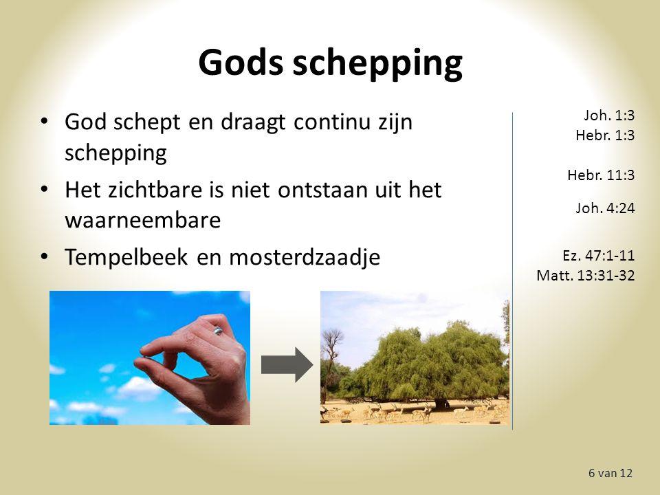 Gods schepping 6 van 12 God schept en draagt continu zijn schepping Het zichtbare is niet ontstaan uit het waarneembare Tempelbeek en mosterdzaadje Joh.