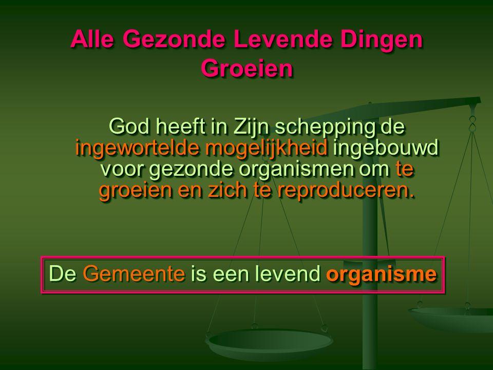 Principes van het Groeien De Gemeente zou een netwerk van Geestelijk Reproducerende Gezinnen moeten zijn, Geen Weeshuis.