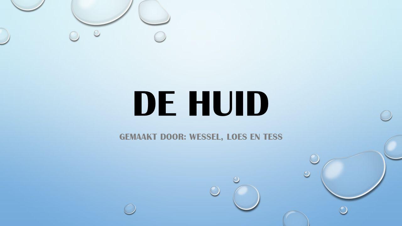 DE HUID GEMAAKT DOOR: WESSEL, LOES EN TESS