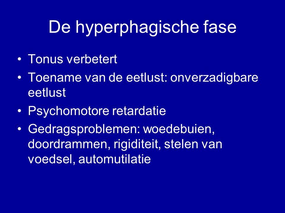 De hyperphagische fase Tonus verbetert Toename van de eetlust: onverzadigbare eetlust Psychomotore retardatie Gedragsproblemen: woedebuien, doordrammen, rigiditeit, stelen van voedsel, automutilatie