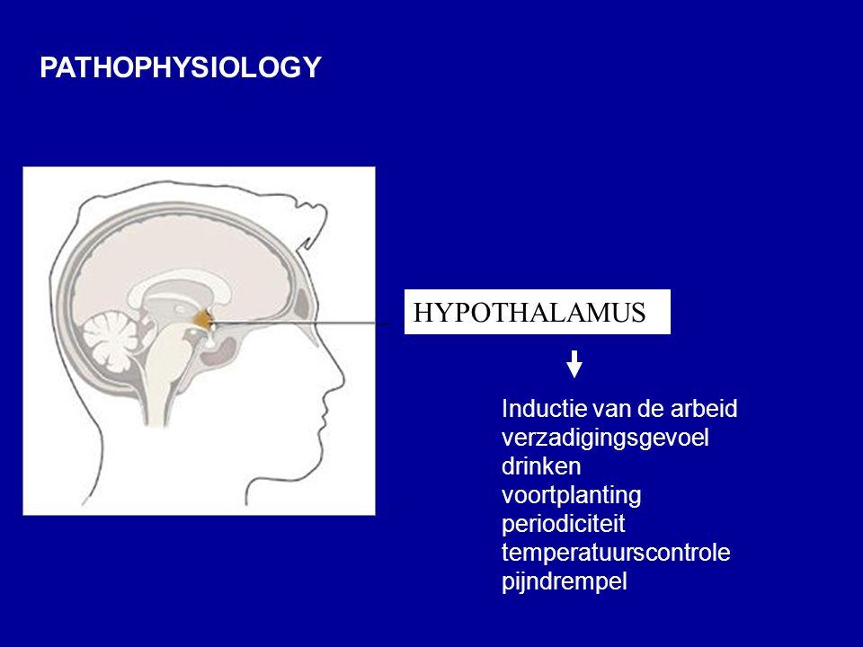PATHOPHYSIOLOGY Inductie van de arbeid verzadigingsgevoel drinken voortplanting periodiciteit temperatuurscontrole pijndrempel HYPOTHALAMUS
