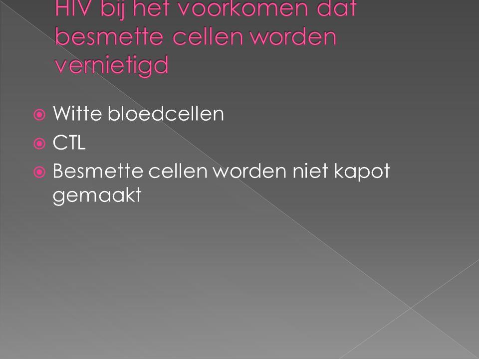  Witte bloedcellen  CTL  Besmette cellen worden niet kapot gemaakt