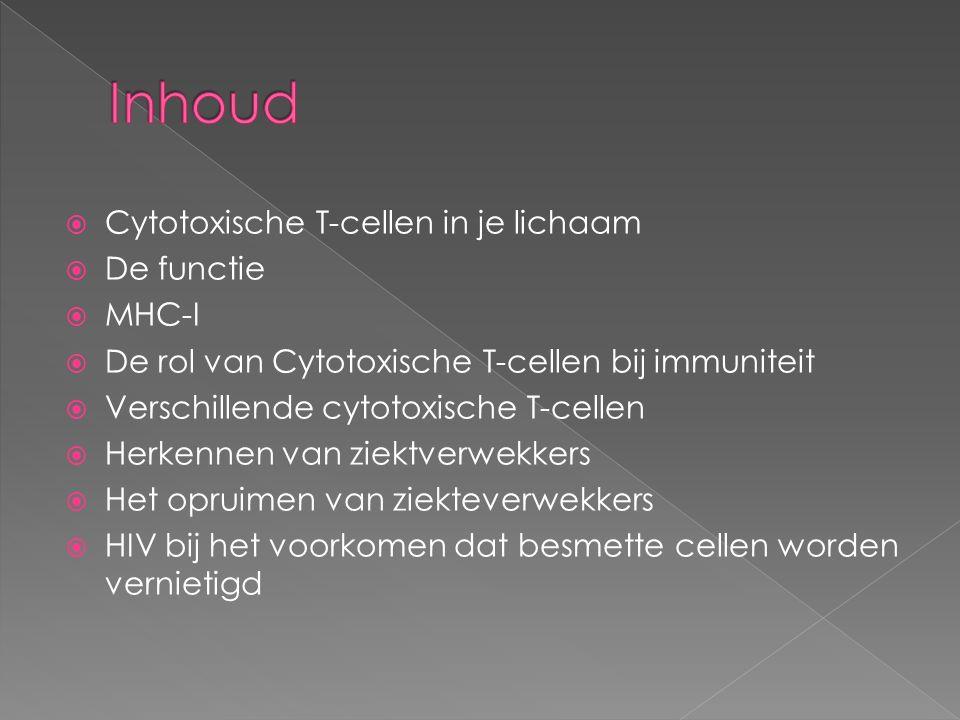  Cytotoxische T-cellen in je lichaam  De functie  MHC-I  De rol van Cytotoxische T-cellen bij immuniteit  Verschillende cytotoxische T-cellen  H