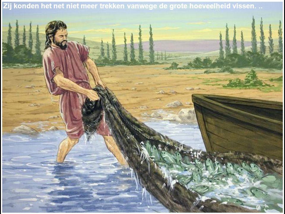 Zij konden het net niet meer trekken vanwege de grote hoeveelheid vissen...