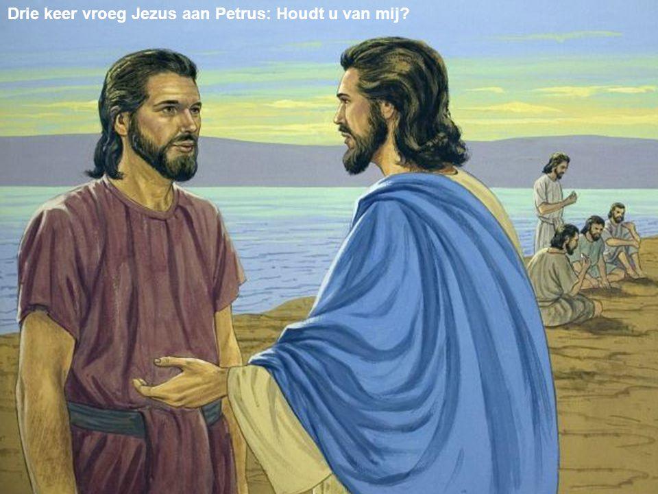 Drie keer vroeg Jezus aan Petrus: Houdt u van mij?