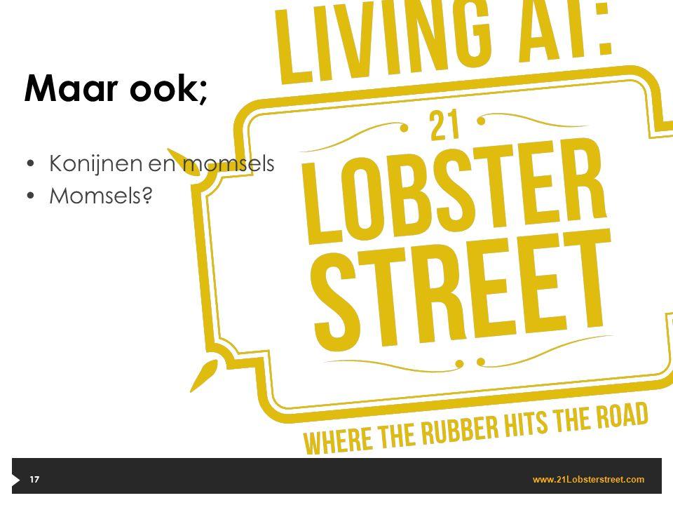 www. 21 Lobsterstreet.com 17 Maar ook; Konijnen en momsels Momsels