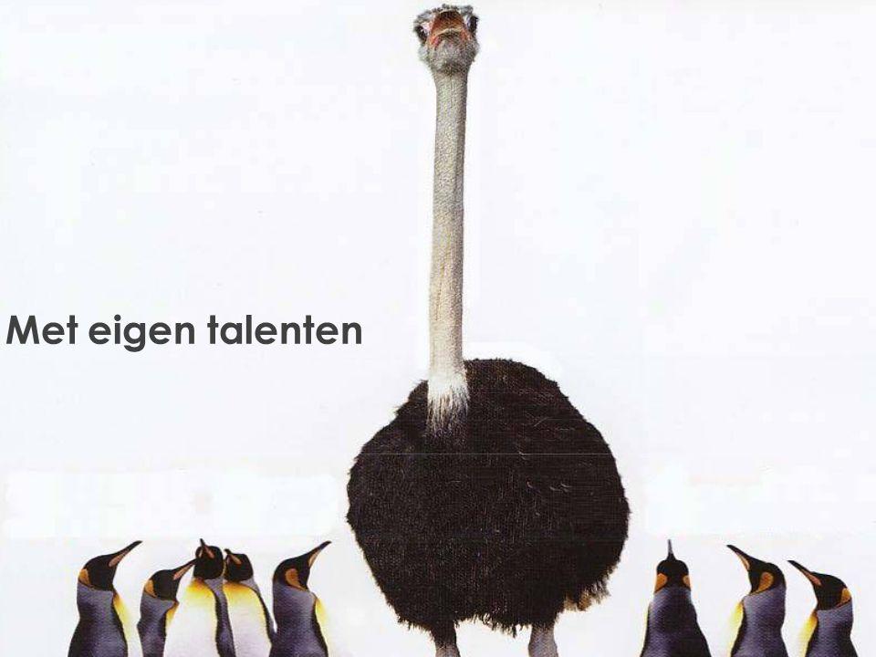 www. 21 Lobsterstreet.com Met eigen talenten