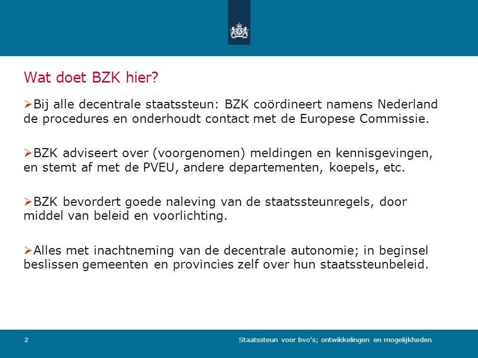 Staatssteun voor bvo s; ontwikkelingen en mogelijkheden2 Wat doet BZK hier.