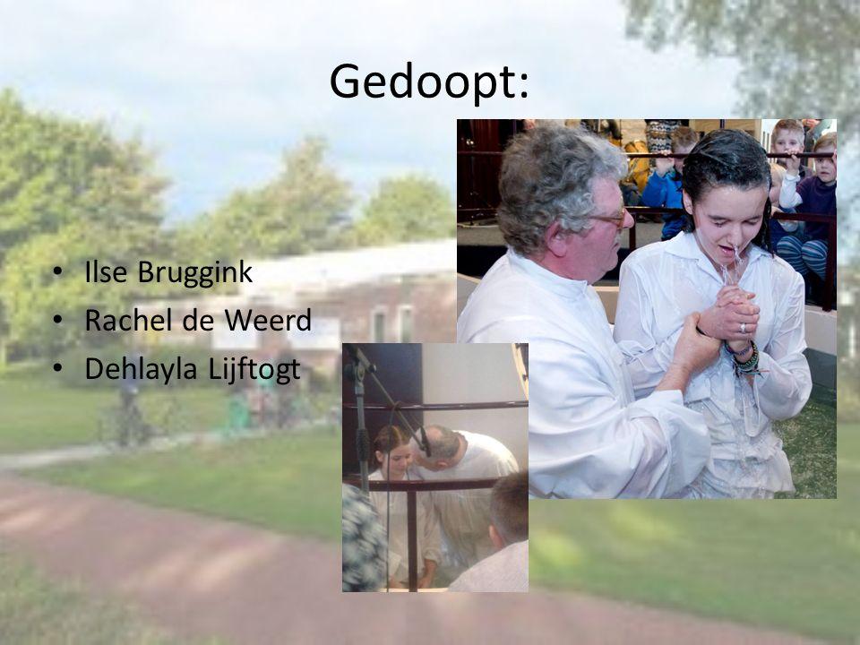 Geboren: Marcha 19-02-2014 Dochter van Engela en Michel Remmerts Minou 03-04-2014 Dochter van Annemiek Brinkman & Richard Nieboer