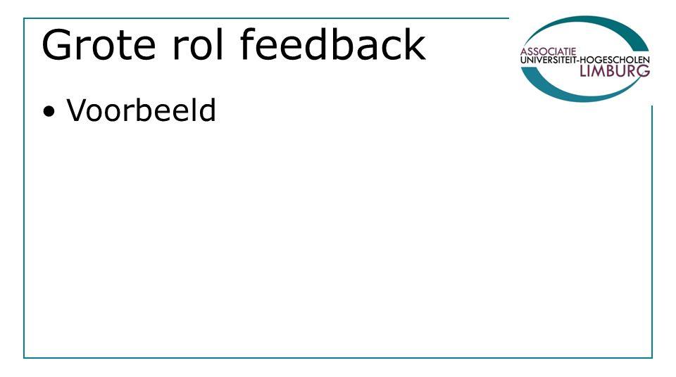 Grote rol feedback Voorbeeld