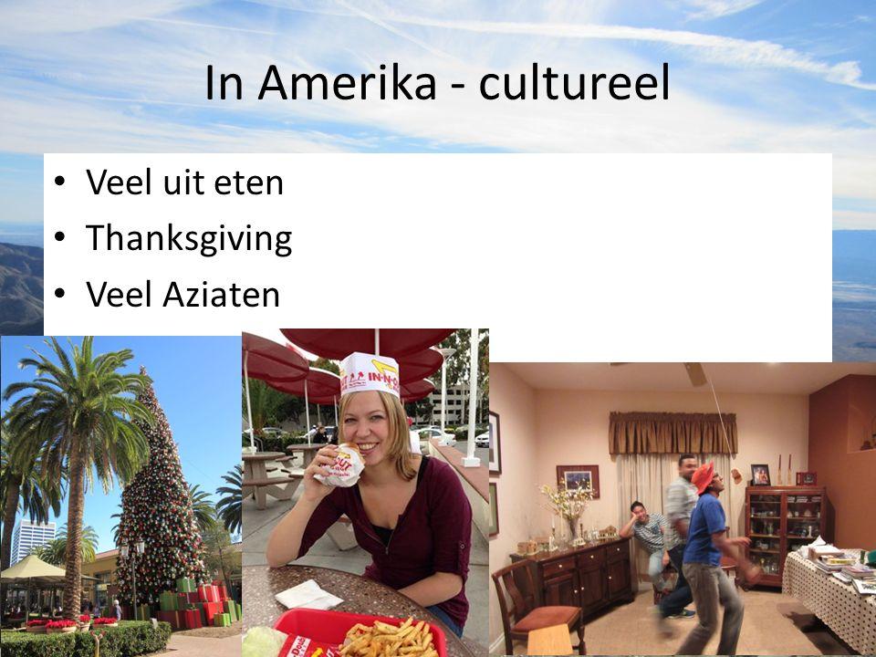In Amerika - cultureel Veel uit eten Thanksgiving Veel Aziaten