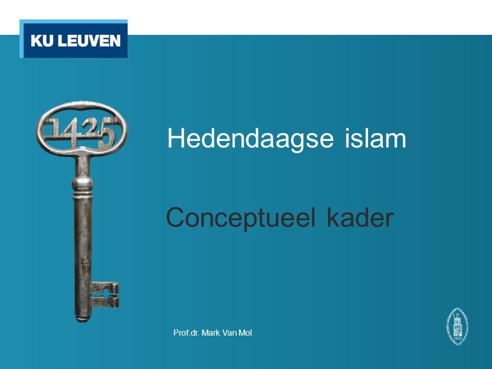 Conceptueel kader Psychologische benadering Externe descriptief wetenschappelijke kennis Externe kennis over: De islamoloog beschrijft de islam als buitenstaander.