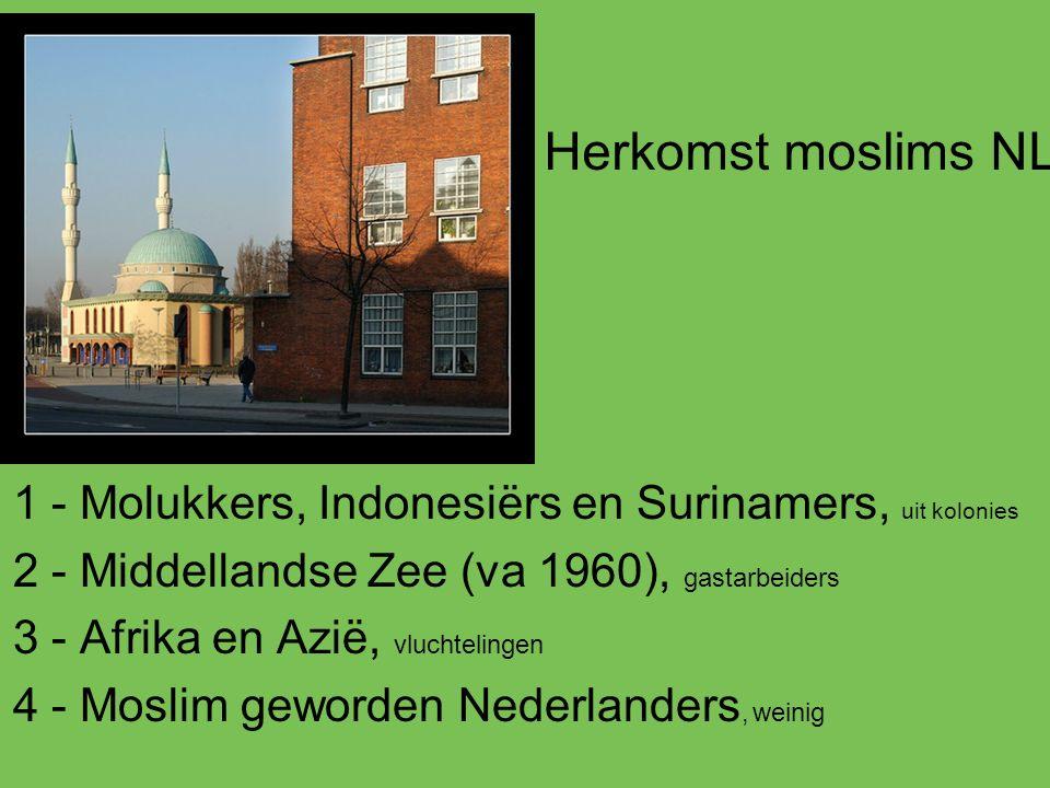 1 - Molukkers, Indonesiërs en Surinamers, uit kolonies 2 - Middellandse Zee (va 1960), gastarbeiders 3 - Afrika en Azië, vluchtelingen 4 - Moslim gewo