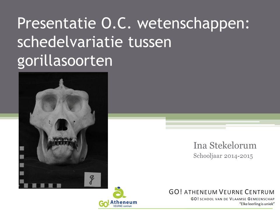 Presentatie O.C.