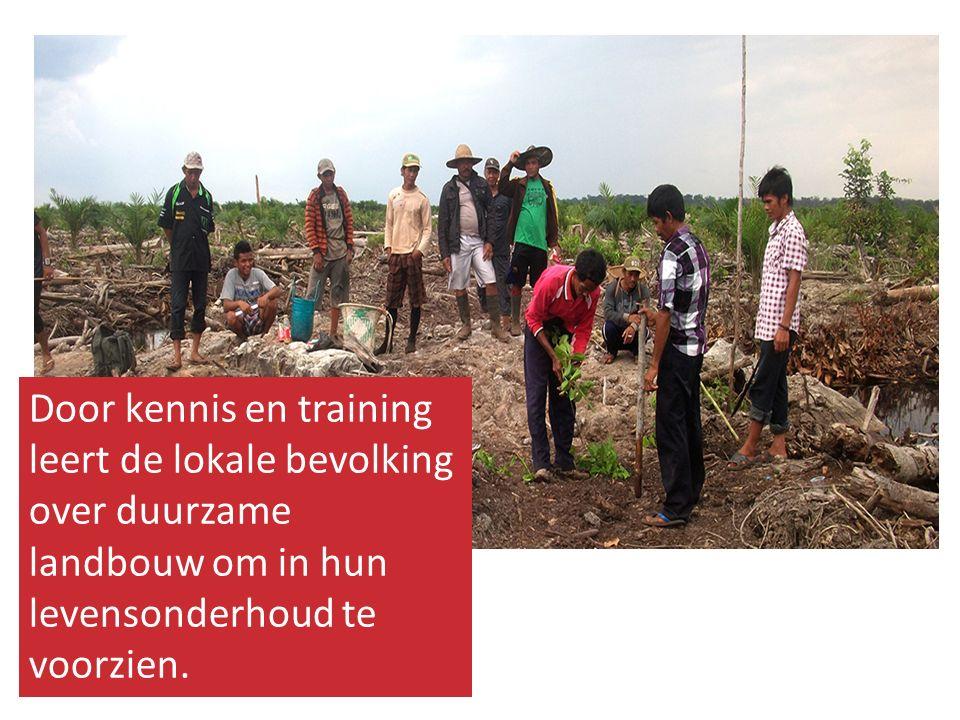 Helpt u mee om de Javaanse boeren te helpen bij het verbeteren van de landbouwproductie?