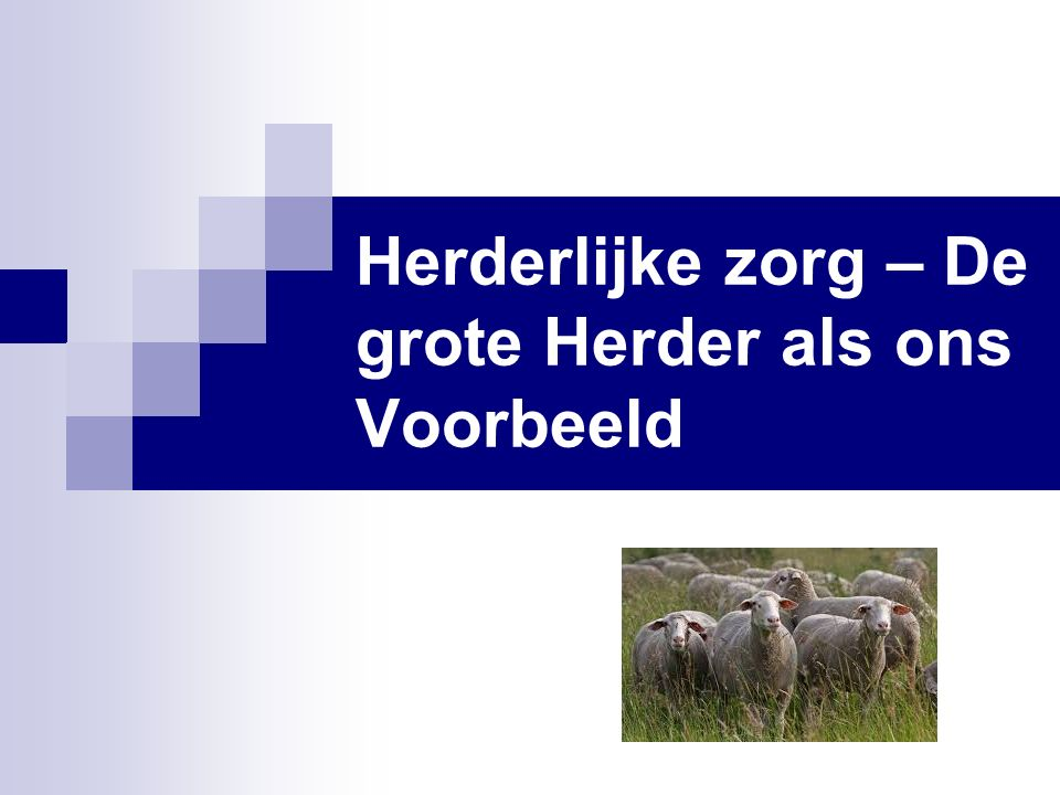 Herderlijke zorg – De grote Herder als ons Voorbeeld