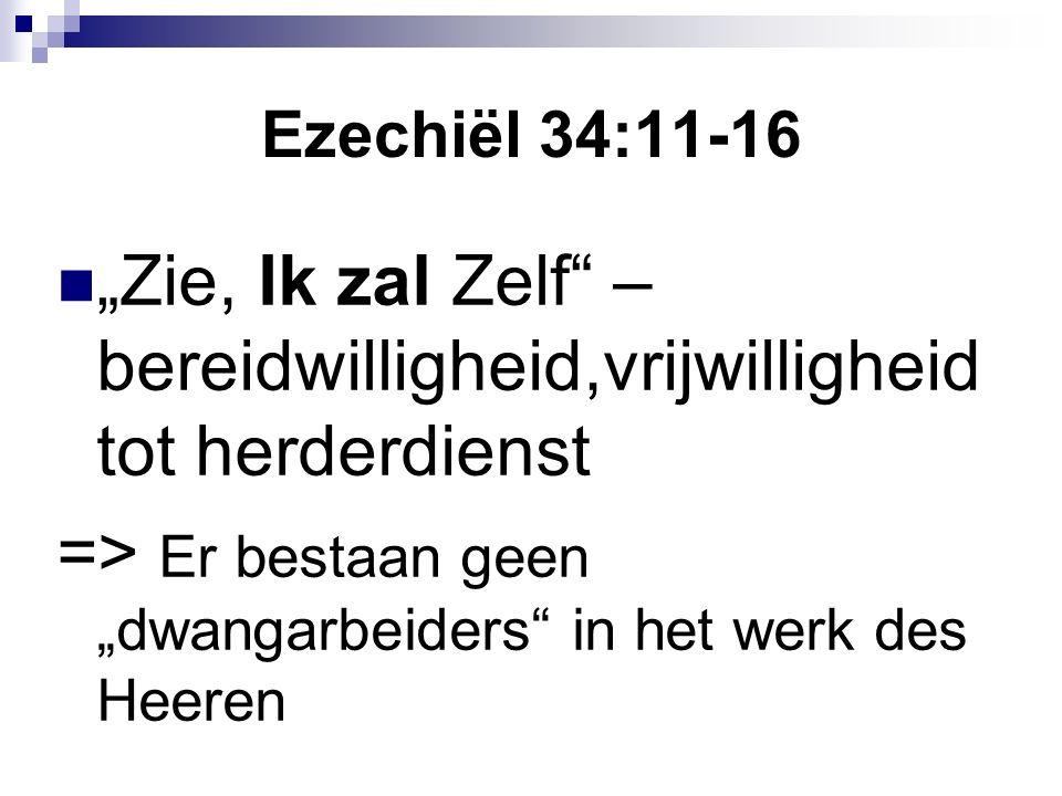 """Ezechiël 34:11-16 """"Zie, Ik zal Zelf – bereidwilligheid,vrijwilligheid tot herderdienst => Er bestaan geen """"dwangarbeiders in het werk des Heeren"""