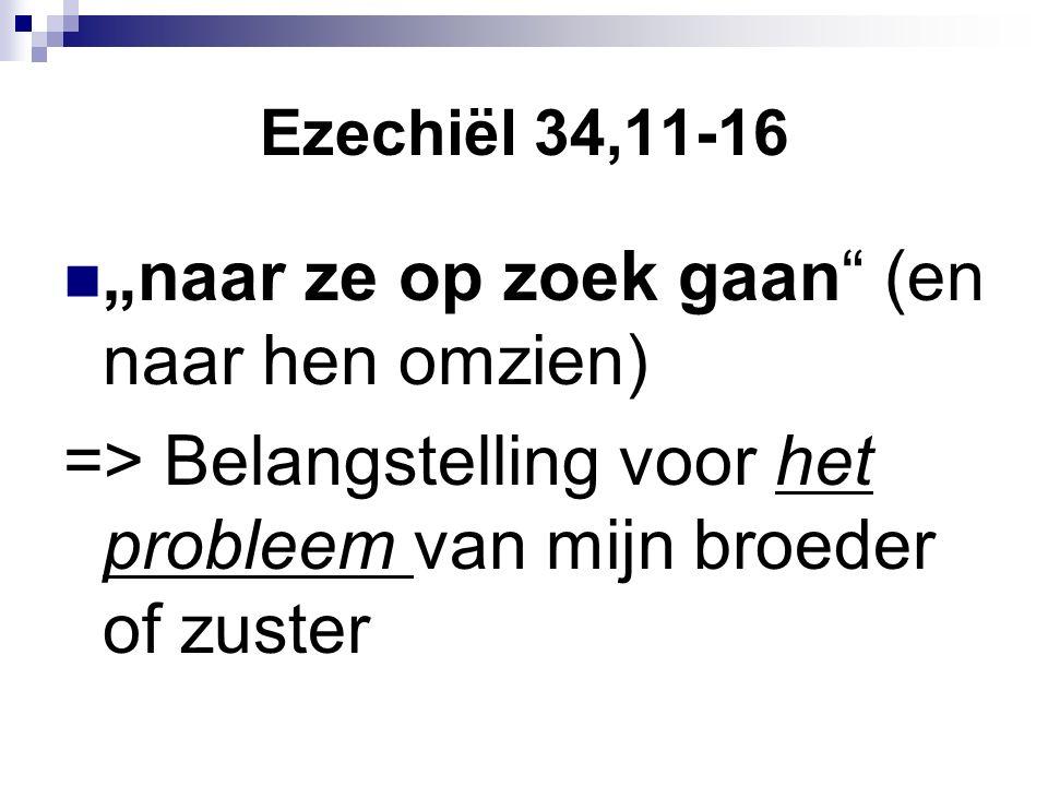 """Ezechiël 34,11-16 """"naar ze op zoek gaan (en naar hen omzien) => Belangstelling voor het probleem van mijn broeder of zuster"""