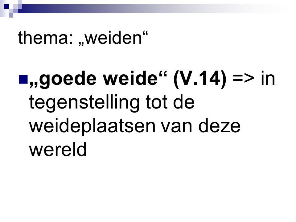 """thema: """"weiden """"goede weide (V.14) => in tegenstelling tot de weideplaatsen van deze wereld"""