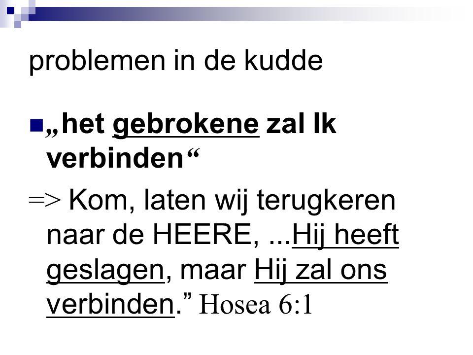 """problemen in de kudde """" het gebrokene zal Ik verbinden => Kom, laten wij terugkeren naar de HEERE,...Hij heeft geslagen, maar Hij zal ons verbinden. Hosea 6:1"""