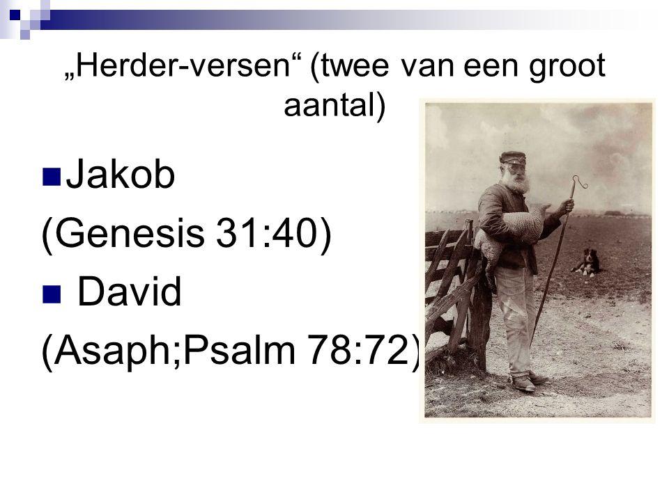 """""""Herder-versen (twee van een groot aantal) Jakob (Genesis 31:40) David (Asaph;Psalm 78:72)"""