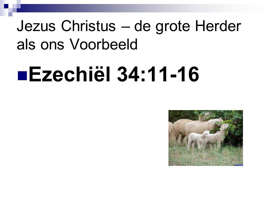Jezus Christus – de grote Herder als ons Voorbeeld Ezechiël 34:11-16