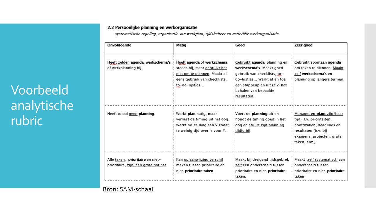 Voorbeeld analytische rubric Bron: SAM-schaal
