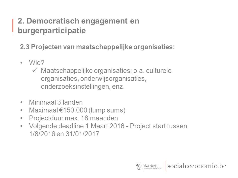 2. Democratisch engagement en burgerparticipatie 2.3 Projecten van maatschappelijke organisaties: Wie? Maatschappelijke organisaties; o.a. culturele o