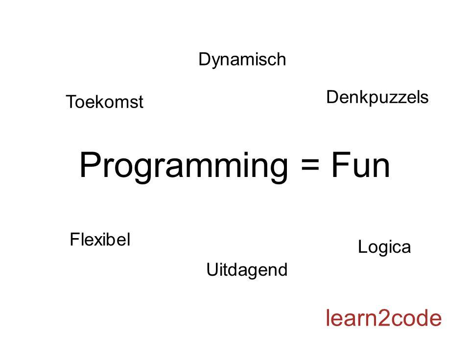 Programming = Fun learn2code Denkpuzzels Flexibel Toekomst Logica Dynamisch Uitdagend