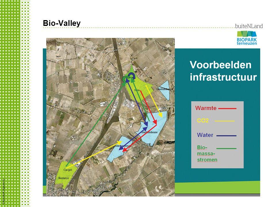 Bio-Valley Hoe wordt er in de Bio-Valley samengewerkt? Grensoverschrijdende samenwerking tussen Biopark Terneuzen en Ghent Bio Energy Valley. Bedrijve