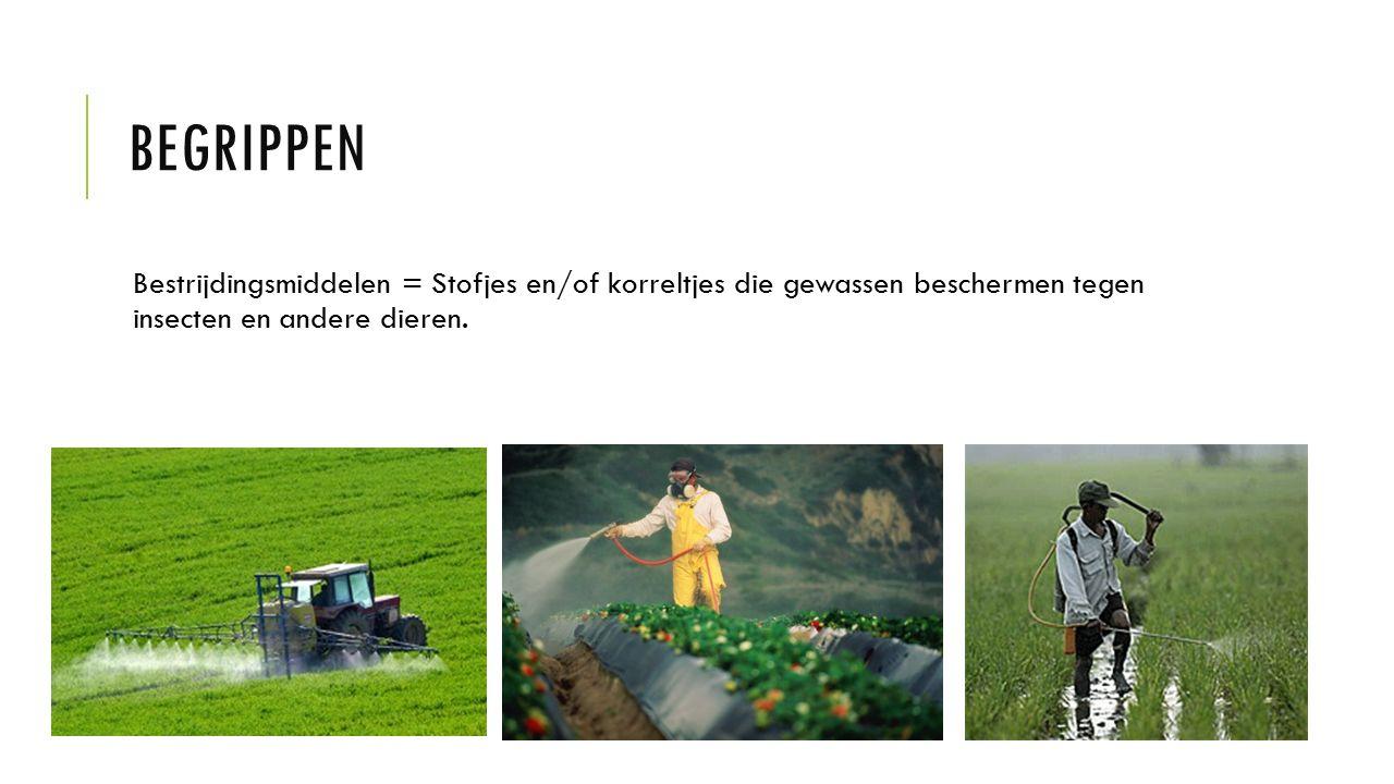 BEGRIPPEN Bestrijdingsmiddelen = Stofjes en/of korreltjes die gewassen beschermen tegen insecten en andere dieren.