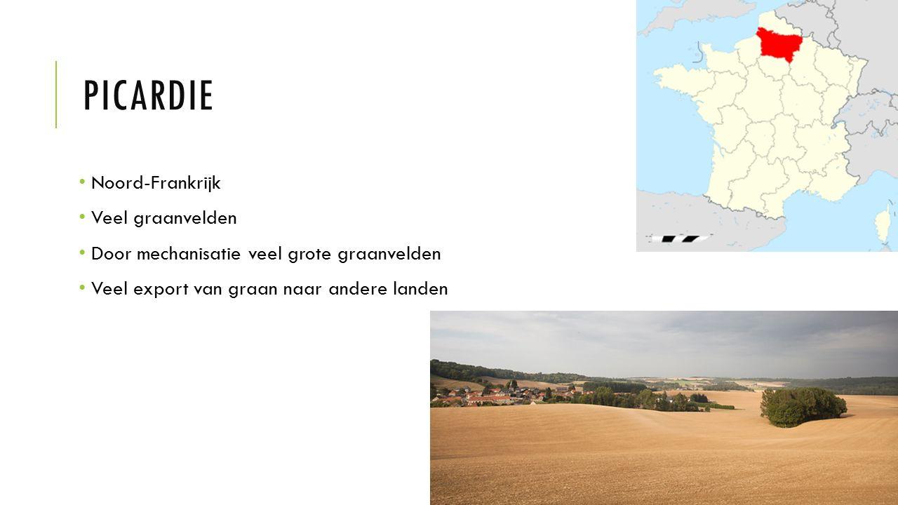 PICARDIE Noord-Frankrijk Veel graanvelden Door mechanisatie veel grote graanvelden Veel export van graan naar andere landen