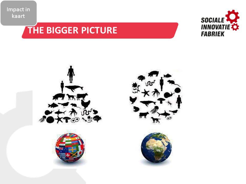 TITELSTIJL VAN MODEL BEWERKEN THE BIGGER PICTURE Impact in kaart