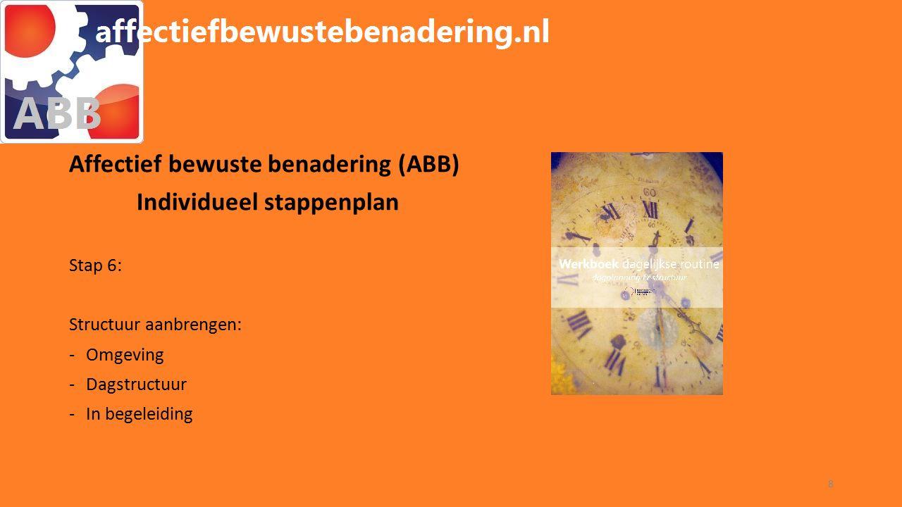 WORKSHOP ABB Affectief bewuste benadering (ABB) Individueel stappenplan Stap 6: Structuur aanbrengen: -Omgeving -Dagstructuur -In begeleiding 8