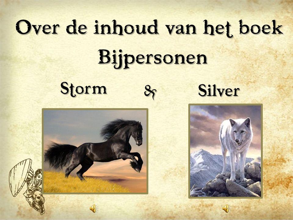 Bijpersonen Storm Silver&