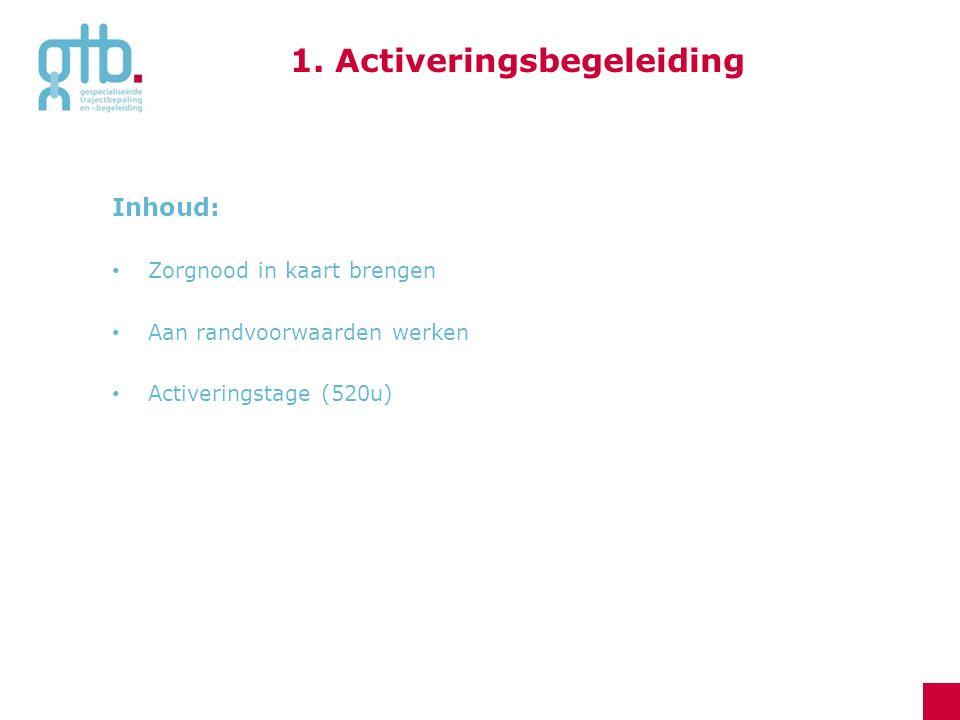 Inhoud: Zorgnood in kaart brengen Aan randvoorwaarden werken Activeringstage (520u) 1. Activeringsbegeleiding