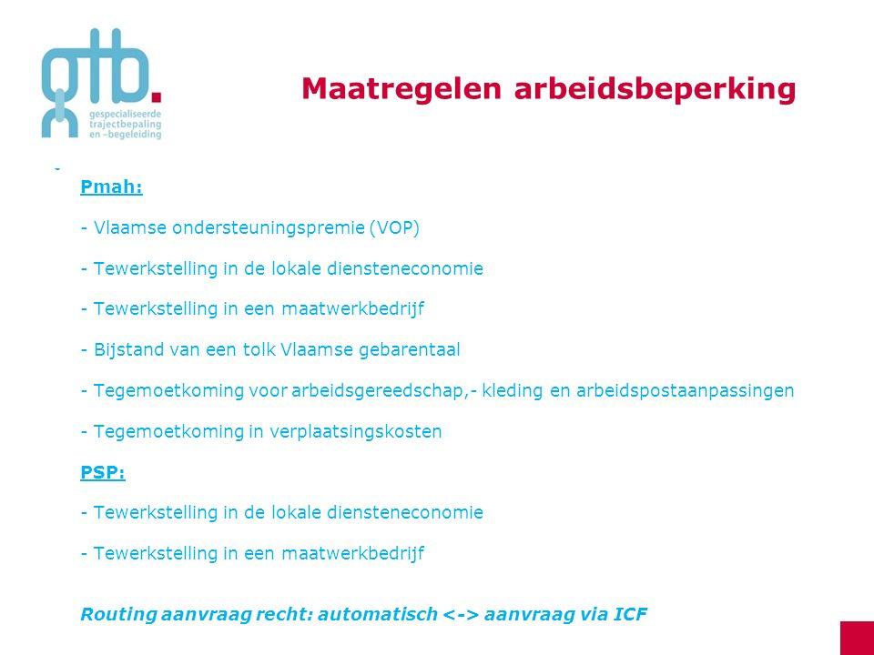 Pmah: - Vlaamse ondersteuningspremie (VOP) - Tewerkstelling in de lokale diensteneconomie - Tewerkstelling in een maatwerkbedrijf - Bijstand van een t