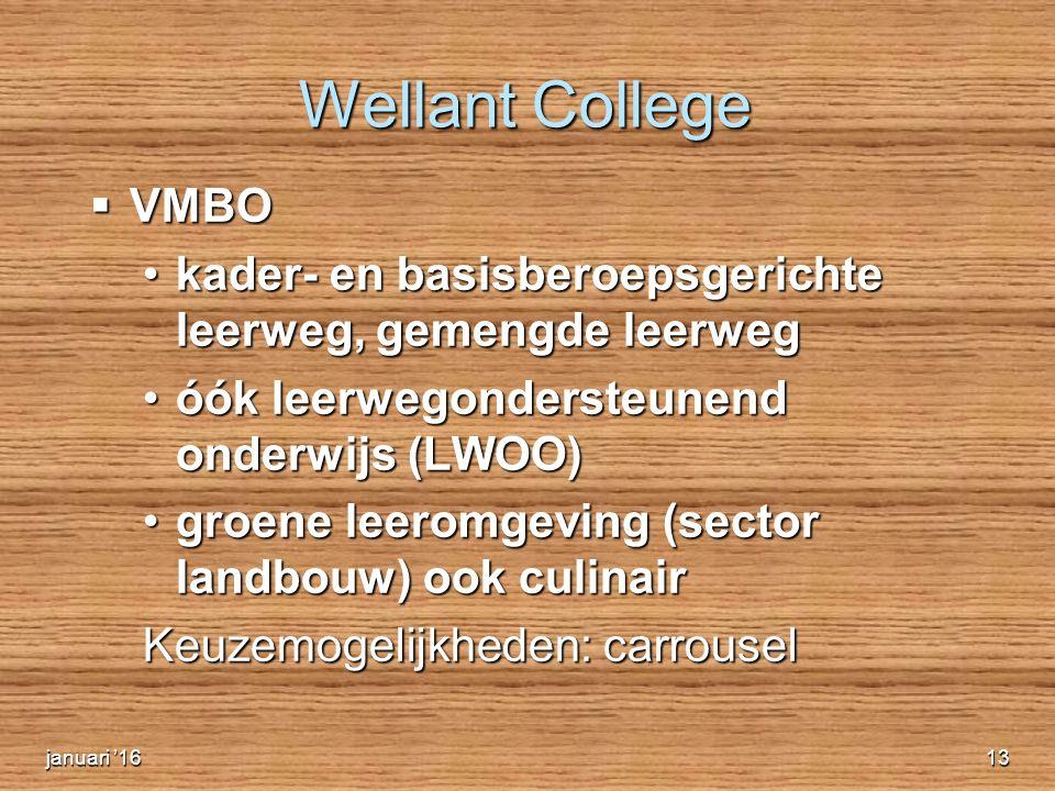 Wellant College  VMBO kader- en basisberoepsgerichte leerweg, gemengde leerwegkader- en basisberoepsgerichte leerweg, gemengde leerweg óók leerwegondersteunend onderwijs (LWOO)óók leerwegondersteunend onderwijs (LWOO) groene leeromgeving (sector landbouw) ook culinairgroene leeromgeving (sector landbouw) ook culinair Keuzemogelijkheden: carrousel  Website: www.welly.nl Website: www.welly.nl Website: www.welly.nljanuari '1613