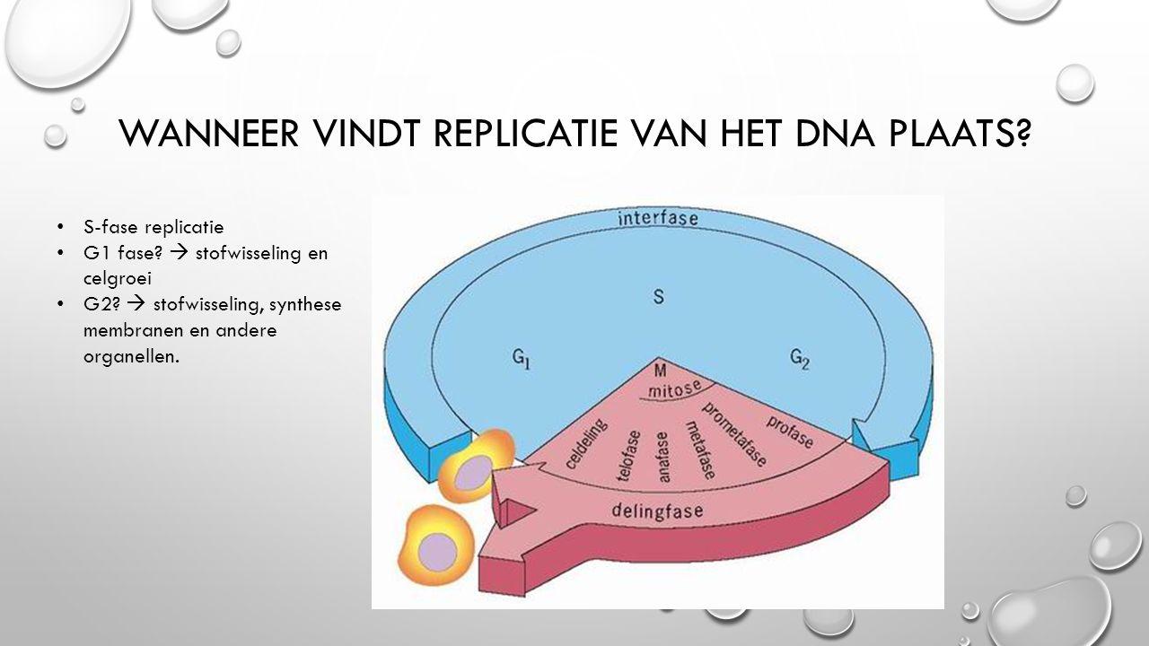 WANNEER VINDT REPLICATIE VAN HET DNA PLAATS.S-fase replicatie G1 fase.