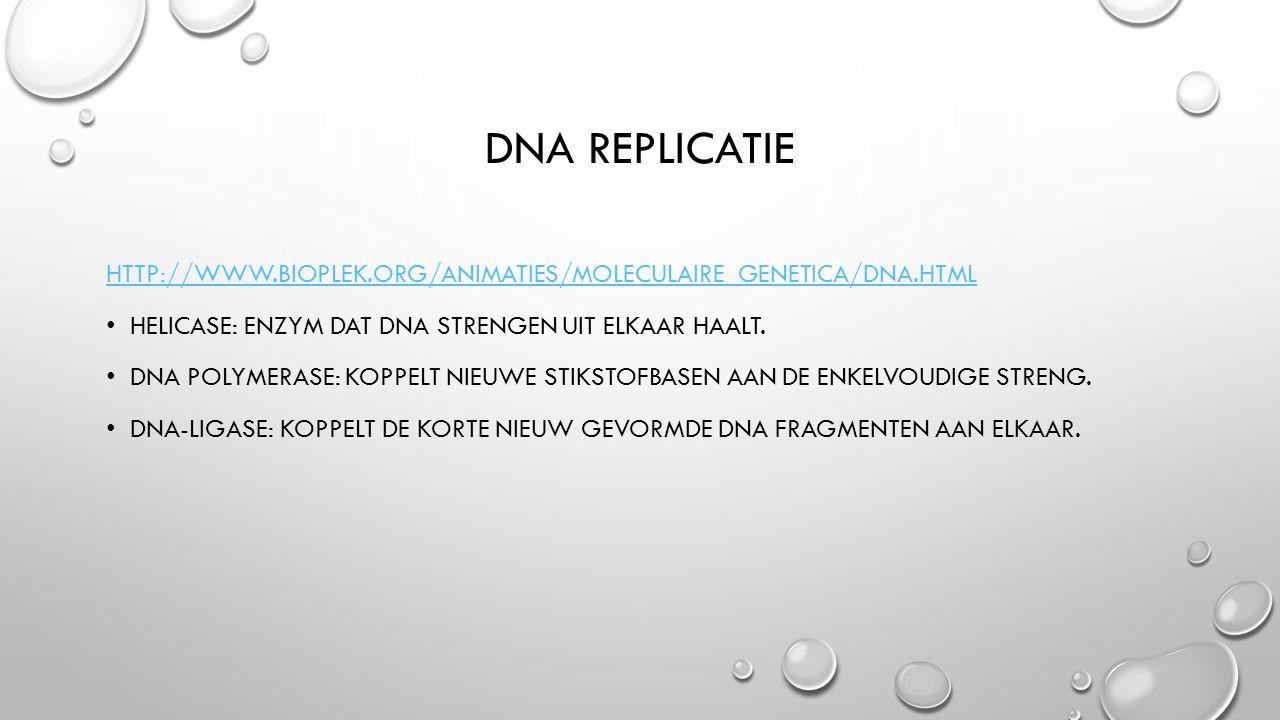 DNA REPLICATIE HTTP://WWW.BIOPLEK.ORG/ANIMATIES/MOLECULAIRE_GENETICA/DNA.HTML HELICASE: ENZYM DAT DNA STRENGEN UIT ELKAAR HAALT. DNA POLYMERASE: KOPPE