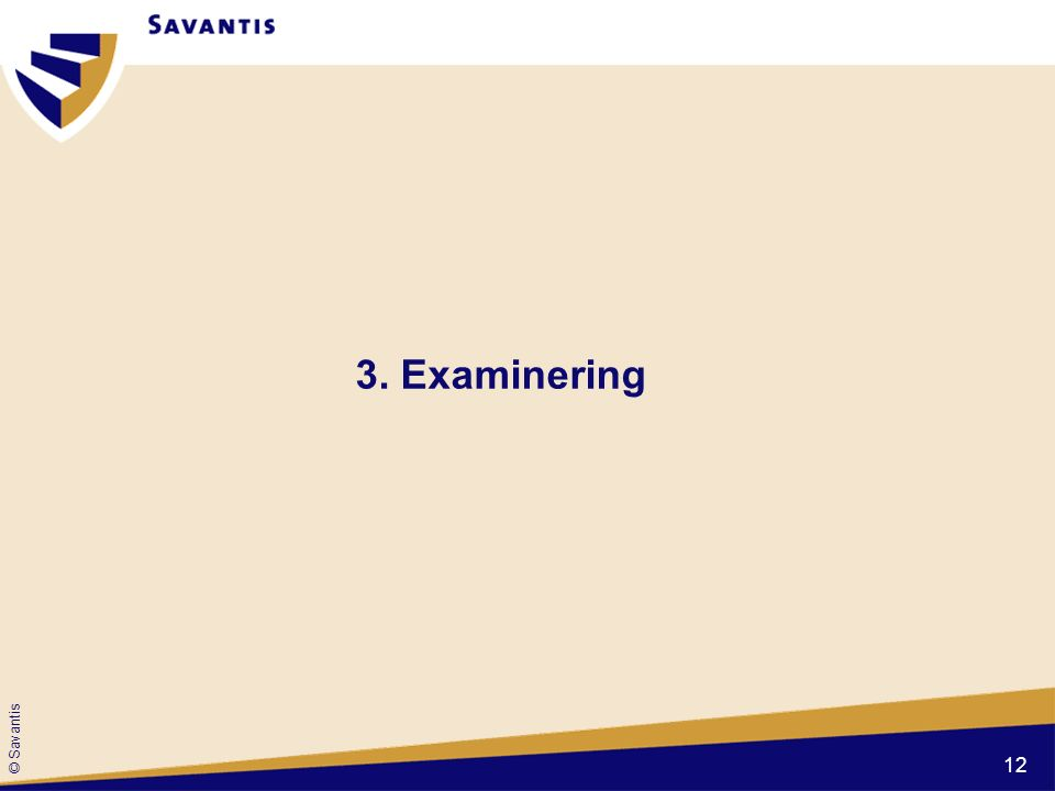 © Savantis 3. Examinering 12