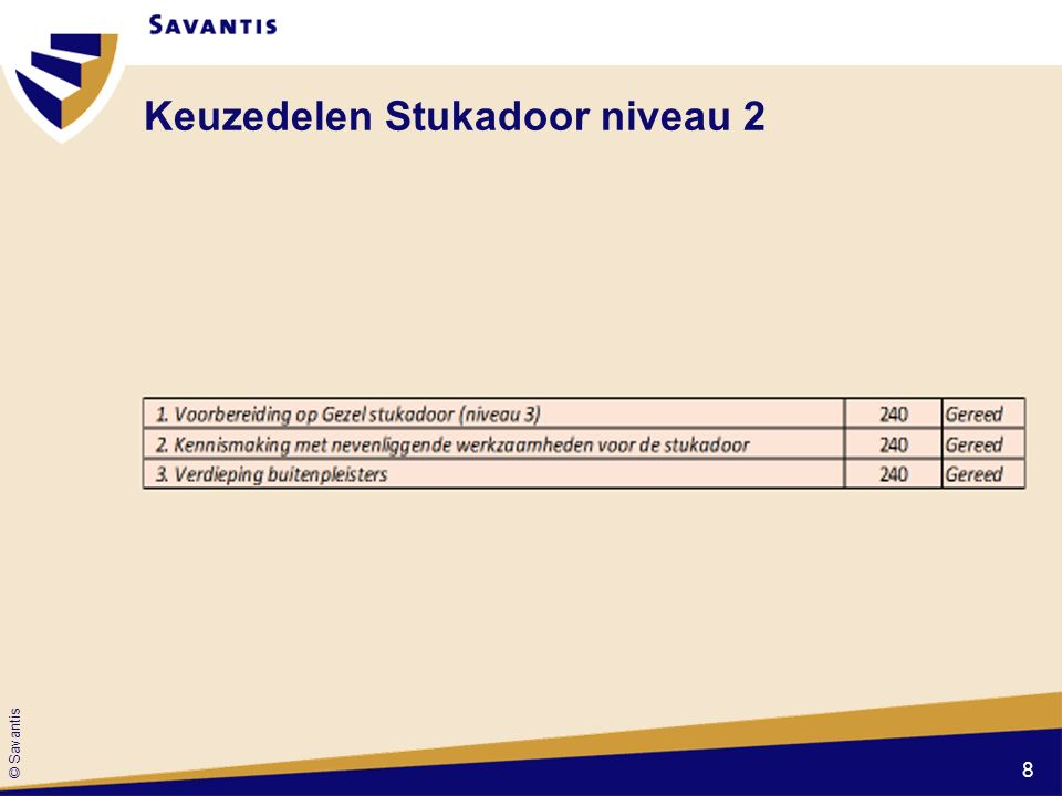 © Savantis Keuzedelen Stukadoor niveau 2 8