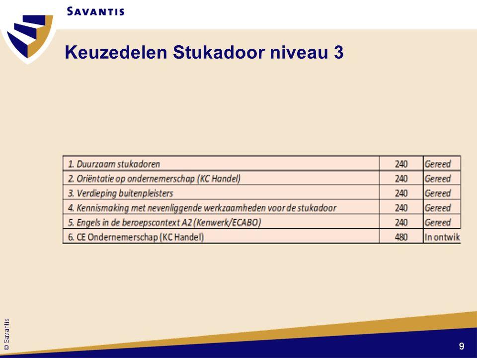 © Savantis Keuzedelen Stukadoor niveau 3 9