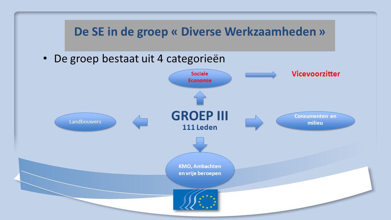 De SE in de groep « Diverse Werkzaamheden » De groep bestaat uit 4 categorieën GROEP III 111 Leden Landbouwers Sociale Economie Consumenten en milieu KMO, Ambachten en vrije beroepen Vicevoorzitter