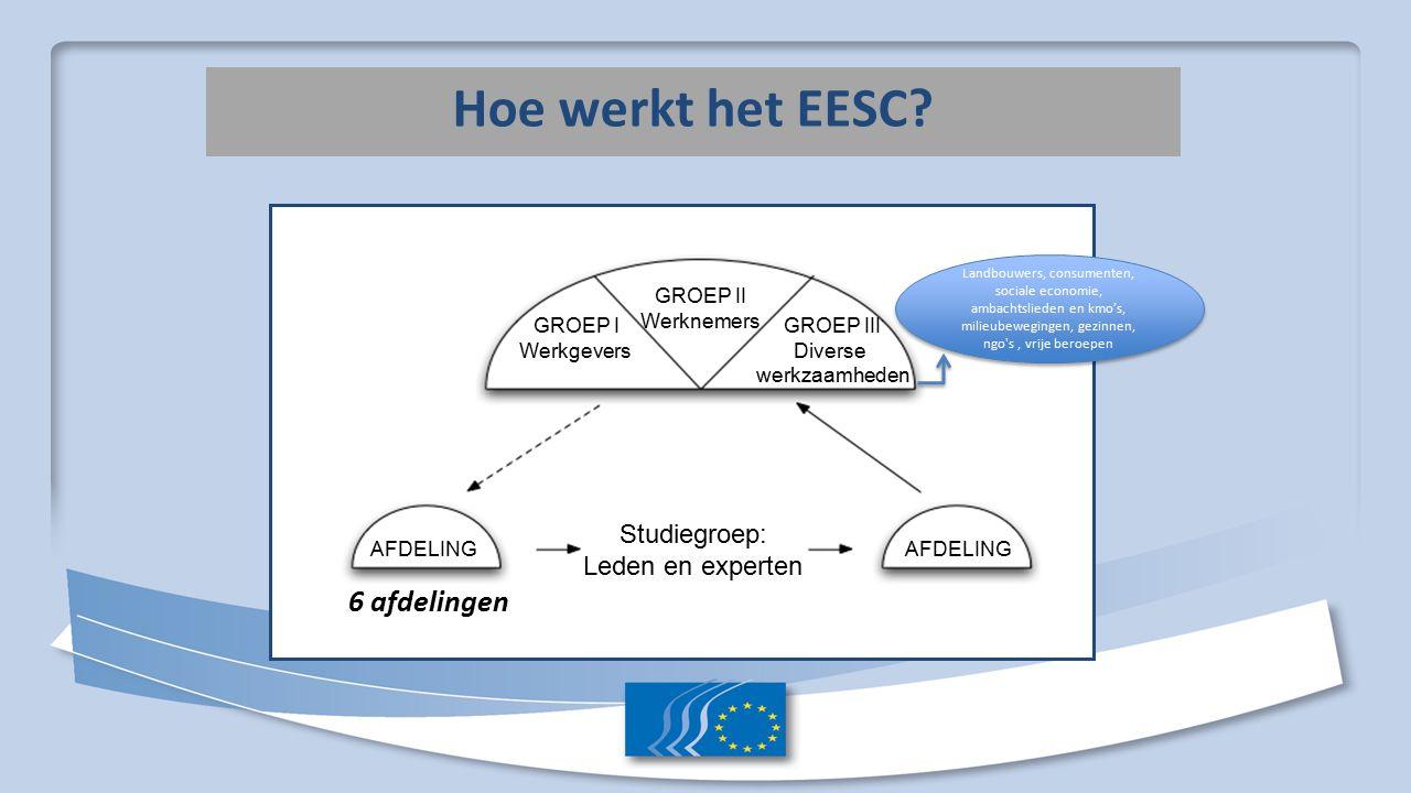 Hoe werkt het EESC.
