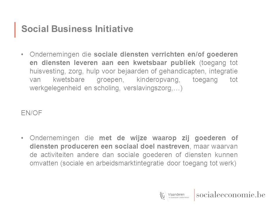 Social Business Initiative Ondernemingen die sociale diensten verrichten en/of goederen en diensten leveren aan een kwetsbaar publiek (toegang tot hui