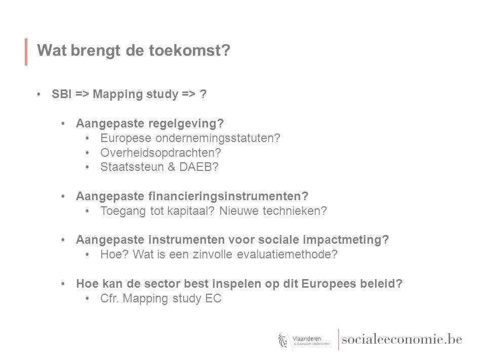 Wat brengt de toekomst? SBI => Mapping study => ? Aangepaste regelgeving? Europese ondernemingsstatuten? Overheidsopdrachten? Staatssteun & DAEB? Aang