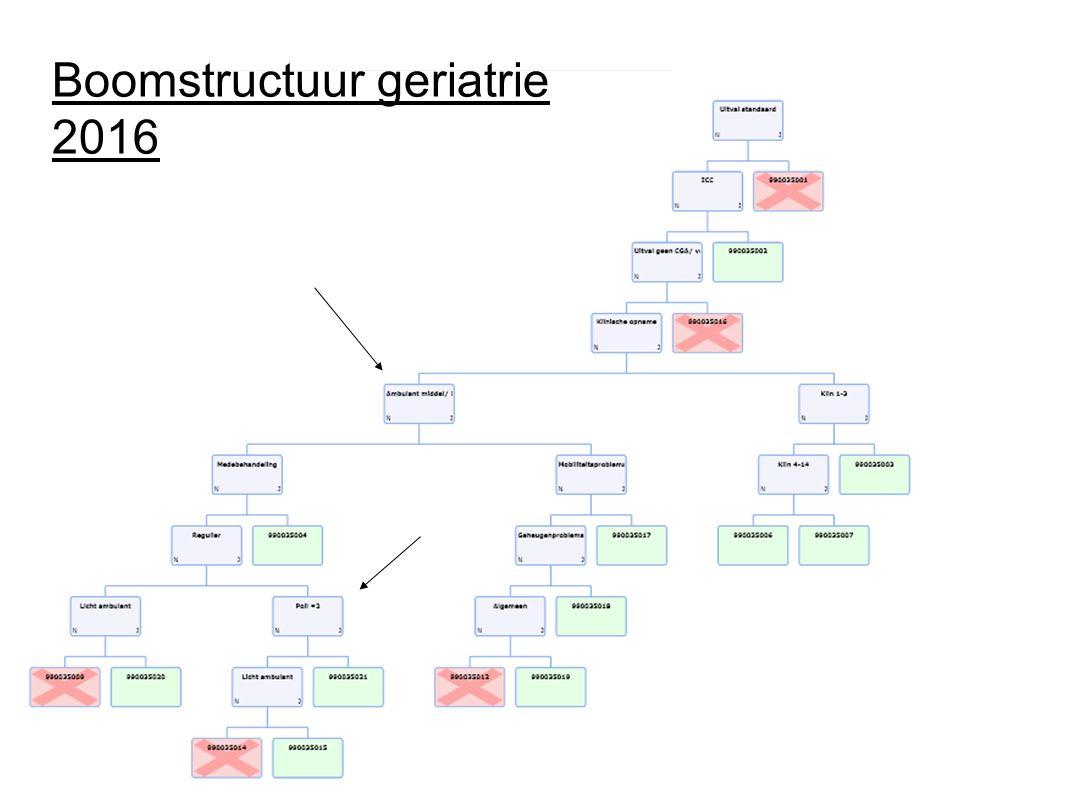 Boomstructuur geriatrie 2016