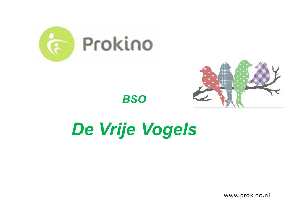 Activiteiten programma DOEN.Prokino's activiteitenprogramma DOEN.